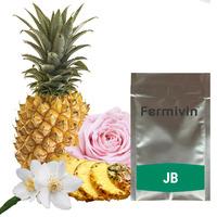 Fermivin JB 3 (20g)