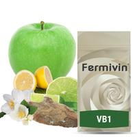 Fermivin VB 1  (500g)