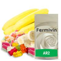 Fermivin AR 2 (500g)